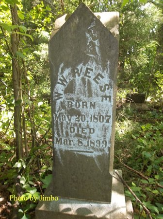REESE, WILKERSON W. - Lincoln County, Tennessee | WILKERSON W. REESE - Tennessee Gravestone Photos