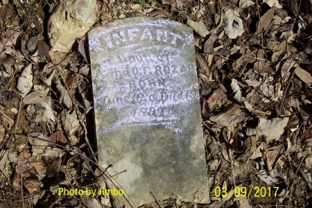 ROZAR, INFANT DAUGHTER - Lincoln County, Tennessee | INFANT DAUGHTER ROZAR - Tennessee Gravestone Photos