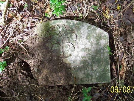 SCOTT, MARY I. - Lincoln County, Tennessee   MARY I. SCOTT - Tennessee Gravestone Photos
