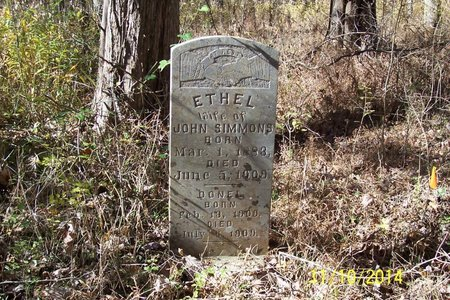 CASHION SIMMONS, ETHEL - Lincoln County, Tennessee | ETHEL CASHION SIMMONS - Tennessee Gravestone Photos