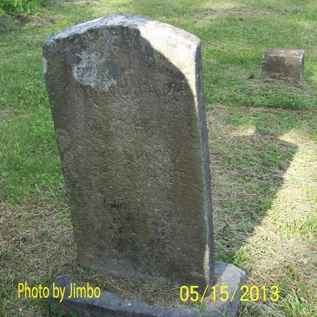 SMITH, SARAH JANE - Lincoln County, Tennessee | SARAH JANE SMITH - Tennessee Gravestone Photos