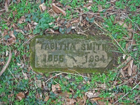 SMITH, TABITHA - Lincoln County, Tennessee | TABITHA SMITH - Tennessee Gravestone Photos