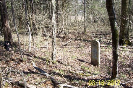 *SOLOMON OVERVIEW,  - Lincoln County, Tennessee |  *SOLOMON OVERVIEW - Tennessee Gravestone Photos