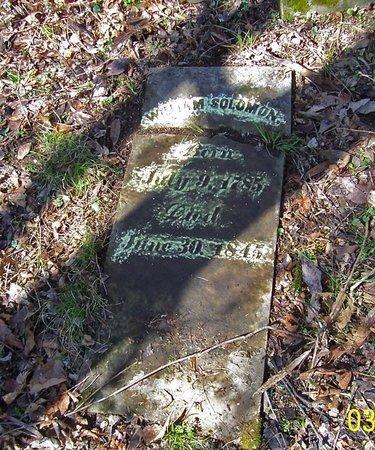 SOLOMON, WILLIAM - Lincoln County, Tennessee | WILLIAM SOLOMON - Tennessee Gravestone Photos