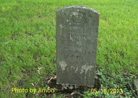 FREEMAN STEELMAN, BELINDA CLEMETINE - Lincoln County, Tennessee | BELINDA CLEMETINE FREEMAN STEELMAN - Tennessee Gravestone Photos