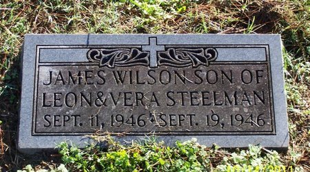 STEELMAN, JAMES WILSON - Lincoln County, Tennessee | JAMES WILSON STEELMAN - Tennessee Gravestone Photos