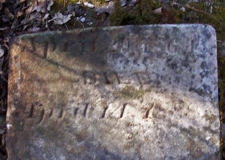 STEELMAN, JAMES A. - Lincoln County, Tennessee | JAMES A. STEELMAN - Tennessee Gravestone Photos