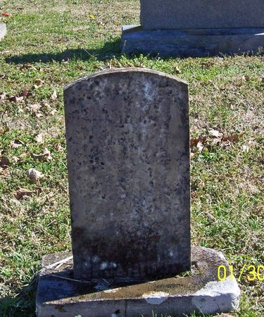 TAYLOR, ARCHIE E. - Lincoln County, Tennessee | ARCHIE E. TAYLOR - Tennessee Gravestone Photos