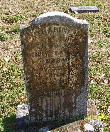 TAYLOR, CATHERINE M. - Lincoln County, Tennessee | CATHERINE M. TAYLOR - Tennessee Gravestone Photos