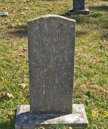 TAYLOR, FANNIE ELIZABETH - Lincoln County, Tennessee   FANNIE ELIZABETH TAYLOR - Tennessee Gravestone Photos