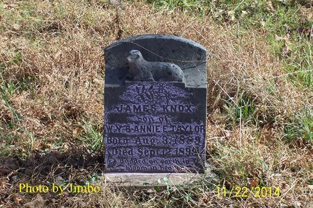 TAYLOR, JAMES KNOX - Lincoln County, Tennessee | JAMES KNOX TAYLOR - Tennessee Gravestone Photos