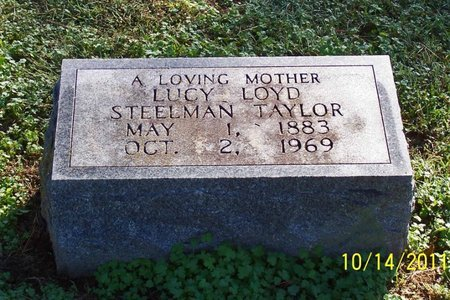 TAYLOR, LUCY - Lincoln County, Tennessee | LUCY TAYLOR - Tennessee Gravestone Photos