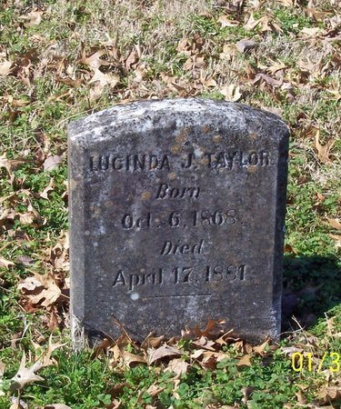 TAYLOR, LUCINDA J. - Lincoln County, Tennessee | LUCINDA J. TAYLOR - Tennessee Gravestone Photos
