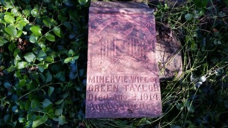 TAYLOR, MINERVIE - Lincoln County, Tennessee | MINERVIE TAYLOR - Tennessee Gravestone Photos