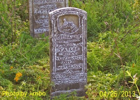TAYLOR, REBECCA - Lincoln County, Tennessee | REBECCA TAYLOR - Tennessee Gravestone Photos