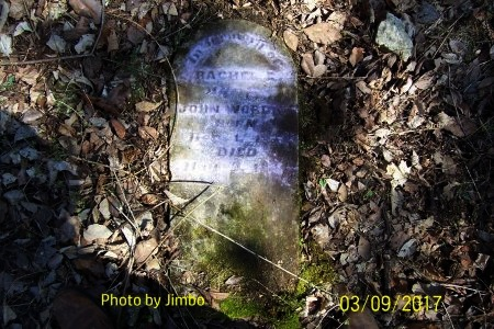 ASHBY WARDEN, RACHEL ELIZABETH - Lincoln County, Tennessee | RACHEL ELIZABETH ASHBY WARDEN - Tennessee Gravestone Photos