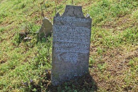 WARREN, WILLIAM P. - Lincoln County, Tennessee | WILLIAM P. WARREN - Tennessee Gravestone Photos