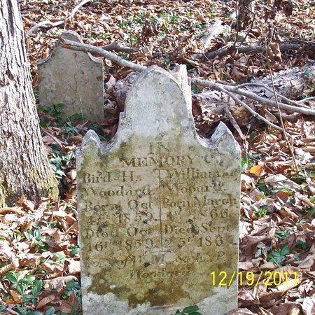 WOODARD, WILLIAM L. - Lincoln County, Tennessee | WILLIAM L. WOODARD - Tennessee Gravestone Photos