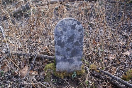 DYER, BABY - Macon County, Tennessee | BABY DYER - Tennessee Gravestone Photos