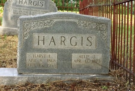 HARGIS, ALLIE JANE - Macon County, Tennessee | ALLIE JANE HARGIS - Tennessee Gravestone Photos