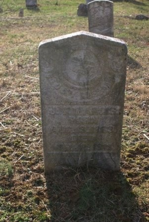 HARGIS, JAMES FRANKLIN - Macon County, Tennessee | JAMES FRANKLIN HARGIS - Tennessee Gravestone Photos