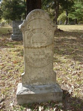 ALEXANDER, JAMES MILTON - Madison County, Tennessee | JAMES MILTON ALEXANDER - Tennessee Gravestone Photos
