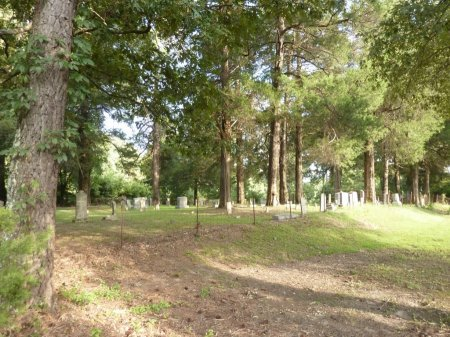 *CEMETERY OVERVIEW,  - Madison County, Tennessee |  *CEMETERY OVERVIEW - Tennessee Gravestone Photos