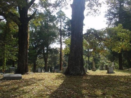*CEMETERY VIEW,  - Madison County, Tennessee |  *CEMETERY VIEW - Tennessee Gravestone Photos