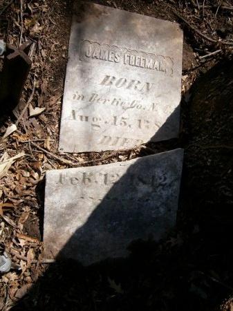 FREEMAN, JAMES - Madison County, Tennessee | JAMES FREEMAN - Tennessee Gravestone Photos