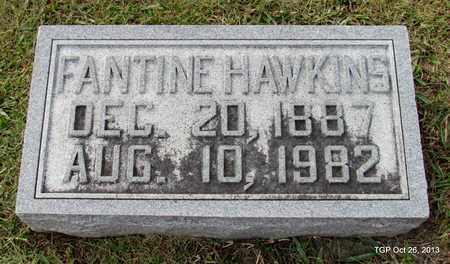 HAWKINS, FANTINE - Madison County, Tennessee   FANTINE HAWKINS - Tennessee Gravestone Photos