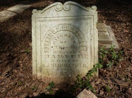 "TARVER MERIWETHER, ELIZABETH C. ""LIZZIE"" - Madison County, Tennessee | ELIZABETH C. ""LIZZIE"" TARVER MERIWETHER - Tennessee Gravestone Photos"