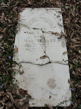 MERIWETHER, FRANCIS SAMUEL - Madison County, Tennessee   FRANCIS SAMUEL MERIWETHER - Tennessee Gravestone Photos