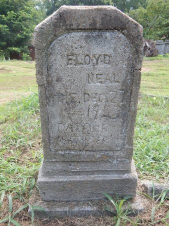 NEAL, FLOYD - Madison County, Tennessee | FLOYD NEAL - Tennessee Gravestone Photos