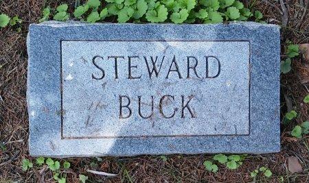 STEWARD, BUCK - Madison County, Tennessee   BUCK STEWARD - Tennessee Gravestone Photos