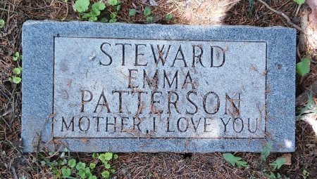 STEWARD, EMMA - Madison County, Tennessee | EMMA STEWARD - Tennessee Gravestone Photos