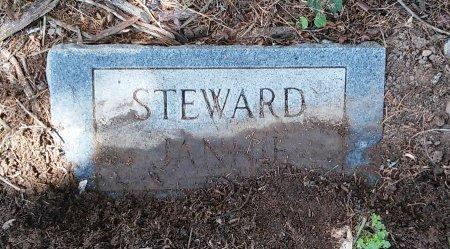 STEWARD, JANNIE - Madison County, Tennessee | JANNIE STEWARD - Tennessee Gravestone Photos