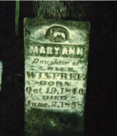 WINFREE, MARY ANN - Madison County, Tennessee | MARY ANN WINFREE - Tennessee Gravestone Photos