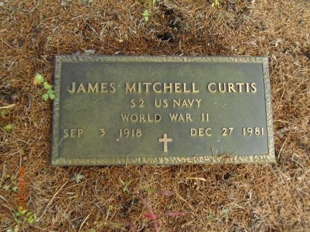 CURTIS (VETERAN WWII), JAMES MITCHELL - Marion County, Tennessee | JAMES MITCHELL CURTIS (VETERAN WWII) - Tennessee Gravestone Photos