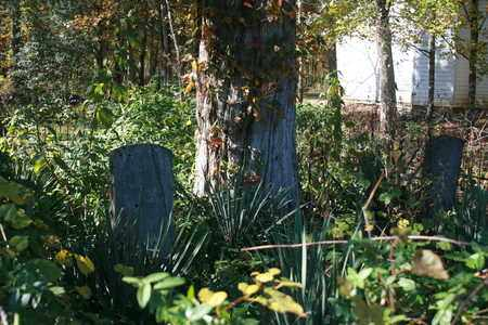 *CATHEY OVERVIEW 2,  - Marshall County, Tennessee |  *CATHEY OVERVIEW 2 - Tennessee Gravestone Photos