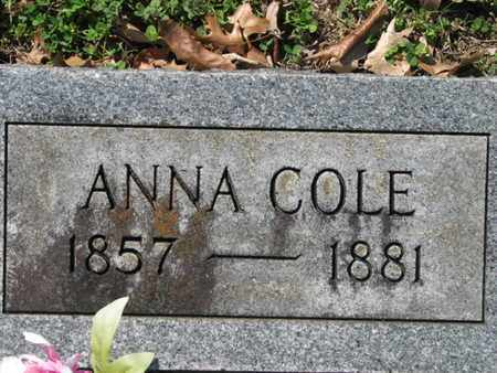 COLE, ANNA - Marshall County, Tennessee | ANNA COLE - Tennessee Gravestone Photos