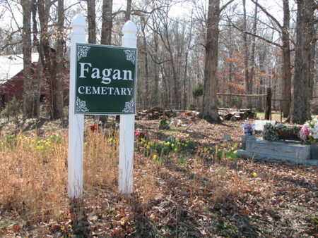*FAGAN OVERVIEW,  - Marshall County, Tennessee    *FAGAN OVERVIEW - Tennessee Gravestone Photos