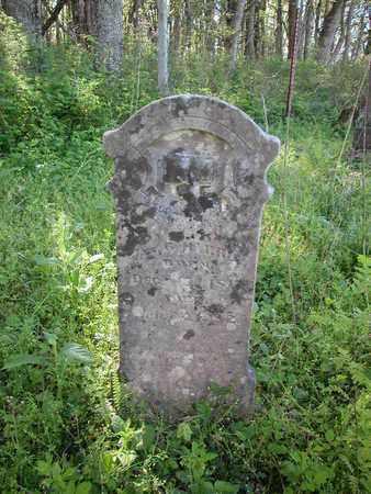 HARRIS, JAMES GILLIAM - Marshall County, Tennessee | JAMES GILLIAM HARRIS - Tennessee Gravestone Photos