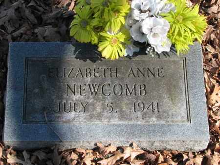 NEWCOMB, ELIZABETH ANNE - Marshall County, Tennessee | ELIZABETH ANNE NEWCOMB - Tennessee Gravestone Photos