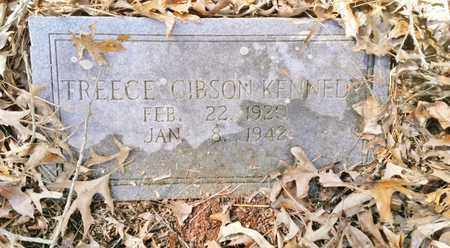 GIBSON KENNEDY, TREECE - McMinn County, Tennessee | TREECE GIBSON KENNEDY - Tennessee Gravestone Photos