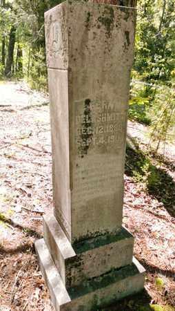 DELASHMITT, FERN - Meigs County, Tennessee | FERN DELASHMITT - Tennessee Gravestone Photos