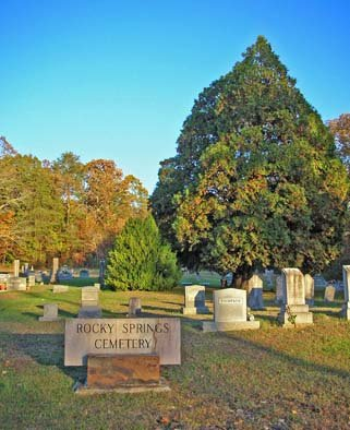 *CEMETERY VIEW,  - Meigs County, Tennessee |  *CEMETERY VIEW - Tennessee Gravestone Photos