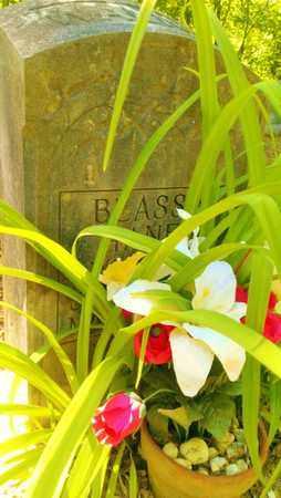 HANEY WALKER, BLASSIE - Meigs County, Tennessee | BLASSIE HANEY WALKER - Tennessee Gravestone Photos