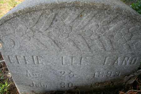 LAND, EFFIE LEE - Monroe County, Tennessee | EFFIE LEE LAND - Tennessee Gravestone Photos