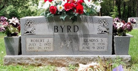 BYRD, ROBERT JEWELL - Montgomery County, Tennessee | ROBERT JEWELL BYRD - Tennessee Gravestone Photos