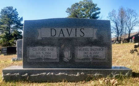 DAVIS, GILFORD RAY - Montgomery County, Tennessee | GILFORD RAY DAVIS - Tennessee Gravestone Photos